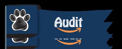 AuditBanner-400px