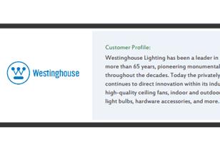 Westinghouse Lighting Case Study